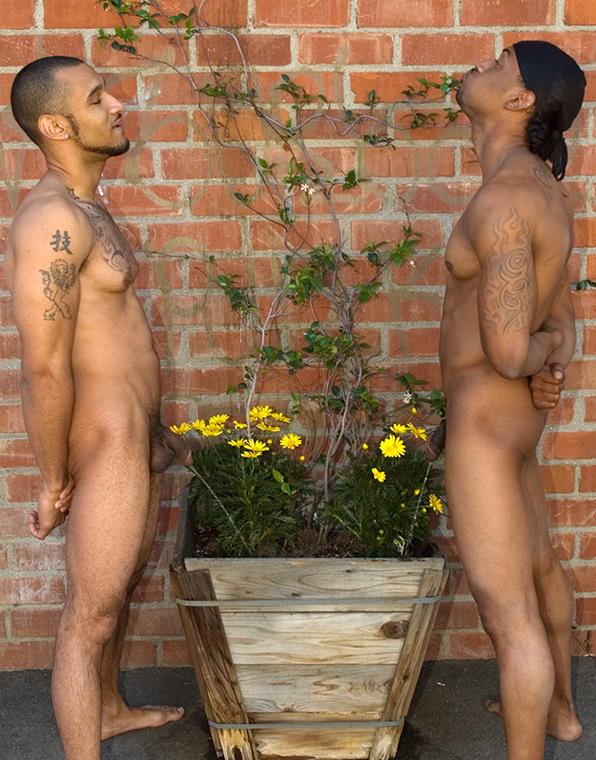 Brothers naked together